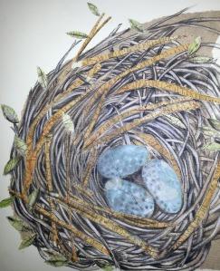 Carol Ramsay nest collage2 (2)